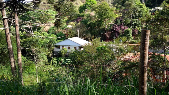 Duas Casas A Venda Em Pessegueiros
