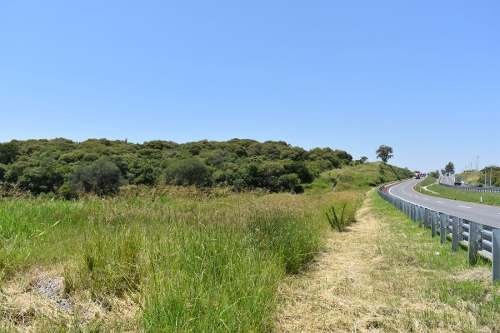Se Vende Terreno 55 Hectareas Frente Autopista Zapotlanejo