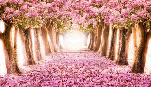 Imagem 1 de 1 de Painel De Festa Tecido Floresta Rosa 1,20 X 1,70m