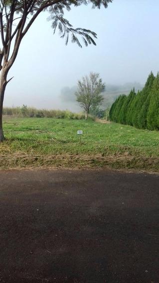 Terreno Padrão Em Porecatu - Pr - Te0066