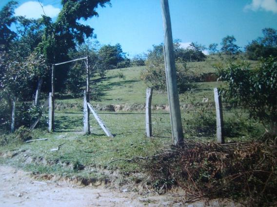 Terreno Em Guapimirim - Vale Das Pedrinhas