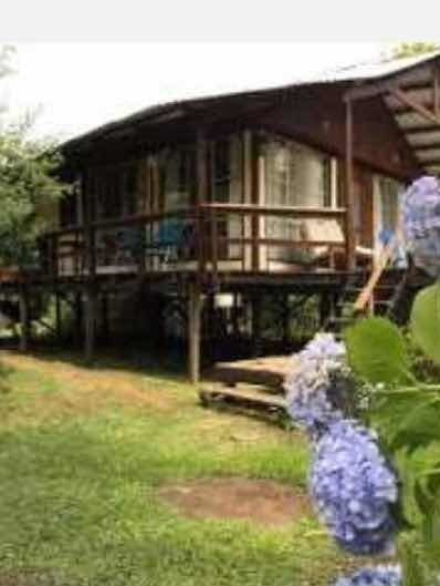 Cabaña Tigre Islas