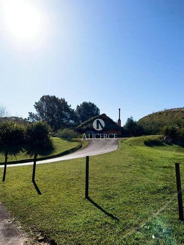Imagem 1 de 9 de Lindo Terreno Em Rancho Queimado - Te0148