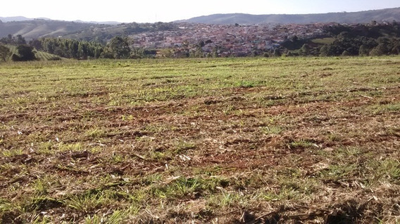 Lote Para Comprar No Zona Rural Em Nepomuceno/mg - Nep456