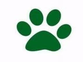 Curso De Peluqueria Canina Comercial Basico Leer Descripcion