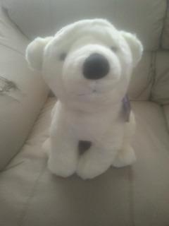 Cachorro Oso Polar Discovery Channel. Envio Gratis *