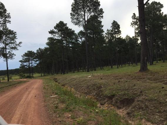 Terreno En Zona Punta Ballena, Financiación