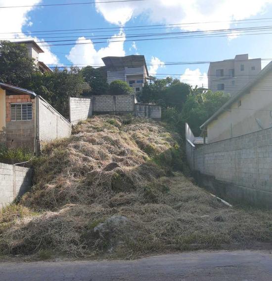 Lote Terreno Area Sitio Chacara