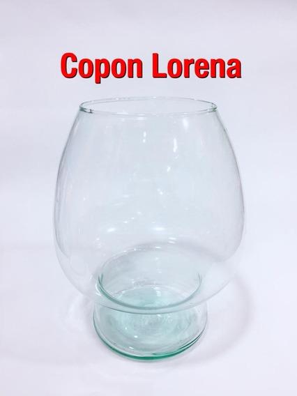 Copon Lorena X 6u