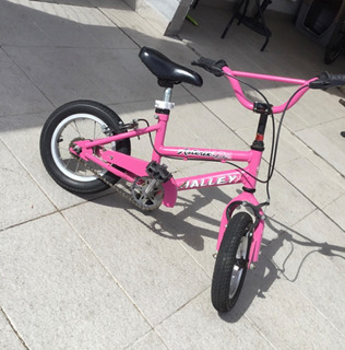 Bicicleta Halley Nena Rodado 12
