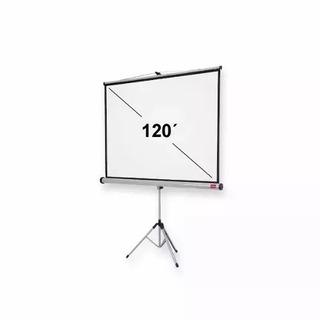 Pantalla Proyector Con Tripode 120 Pulgadasl - Envio Gratis