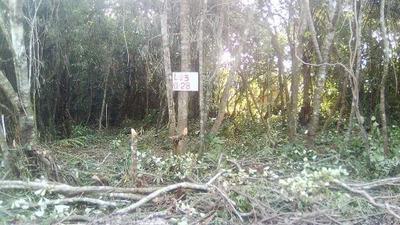 Terreno No Jardim Califórnia, Em Itanhaém, Litoral Sul De Sp