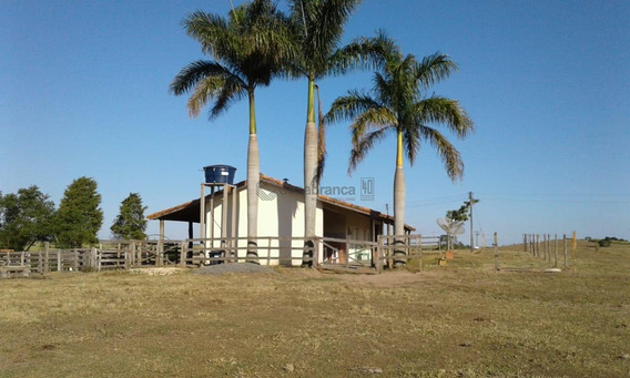 Lindo Sítio Em Guareí/sp(região De Itapetininga)05 Alqueires(121.000 M2)95% Tratorável/03 Açudes/vista Privilegiada Do Horizonte Em 360°/escriturado - Si0080