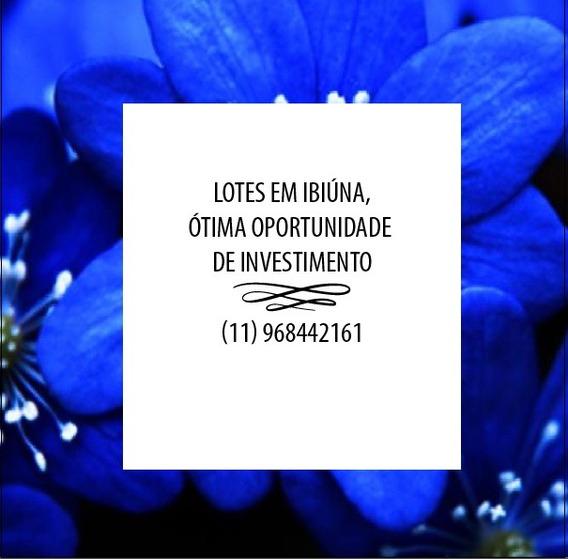 L. Invista, Lotes Planos E Bem Localizados. Cidade De Ibiúna