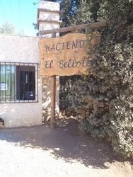 c994899fe30d8 Vendo Parcela Monte en Parcelas en Venta en Mercado Libre Chile