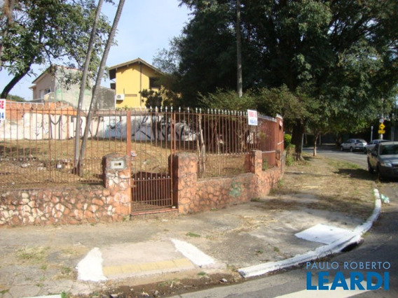 Terreno - Alto Da Lapa - Sp - 600345