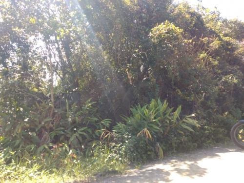 Terreno Na Praia Com 260 M², Em Itanhaém/sp 5998-pc
