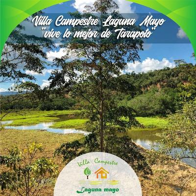 Lotes, Terrenos Y Casas En Tarapoto - Laguna Mayo