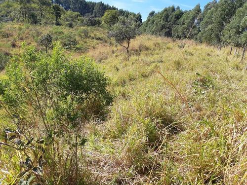Terreno Para Venda Em Esmeraldas, Andiroba - T22_1-1474609