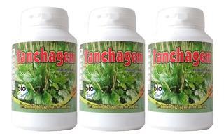 3 Frascos De Tanchagem Com 60 Cápsulas 500mg Bio Fresh
