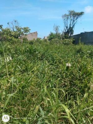 Imagem 1 de 1 de Terreno Lado Serra Com 260 M², Em Itanhaém-sp   7986-pc