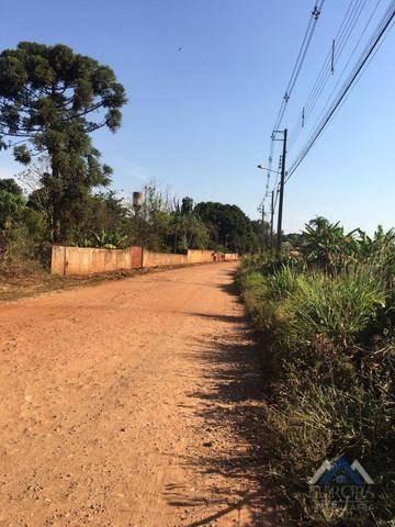 Imagem 1 de 9 de Chácara À Venda, 3000 M² Por R$ 310.000,00 - Indusville - Londrina/pr - Ch0126
