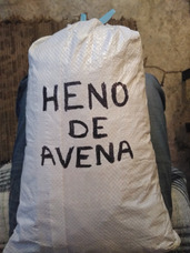 Heno De Avena Para Conejo Cuyo O Chichilla