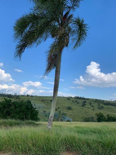 R16- Terrenos De 1000m,a Venda Em Jacareí