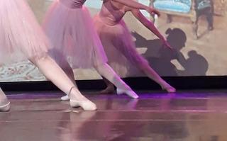 Tutu Rosa Romántico Ballet