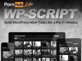 Key Wp-script Wordpress