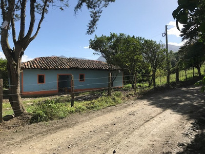 Sell Beautiful Farm, Forest, Water Vendo Granja Bosque Agua