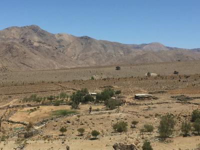 Vendo Terreno Mamalluca, Valle Del Elqui