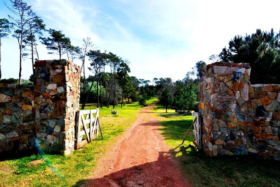 Quinta En Venta En Punta Ballena