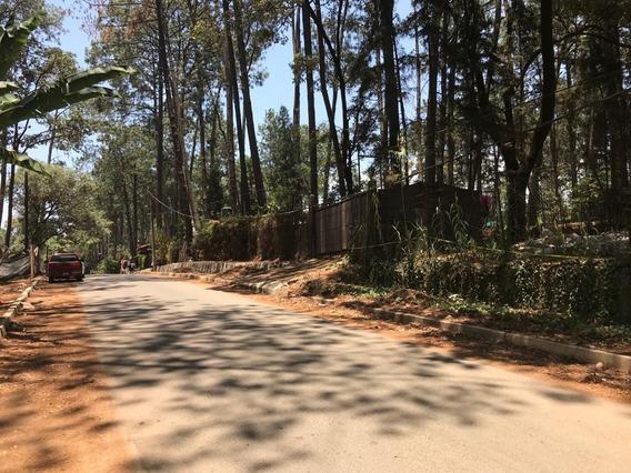 Avandaro Dos Terrenos De 1800 M2 En Bosque,servicios Y Calle