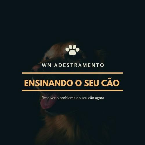Imagem 1 de 4 de Adestramento De Cães