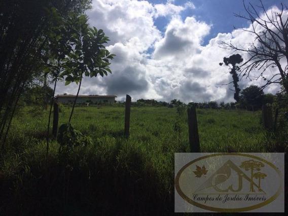 Terreno Para Venda Em São Bento Do Sapucaí, Bairro Do Bau - 148_2-665001