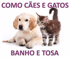 Curso Banho E Tosa Para Cães, Gatos Em 23 Dvds - A56