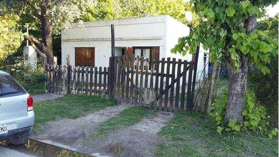 Casa 2 Dormitorios Con Arboleda