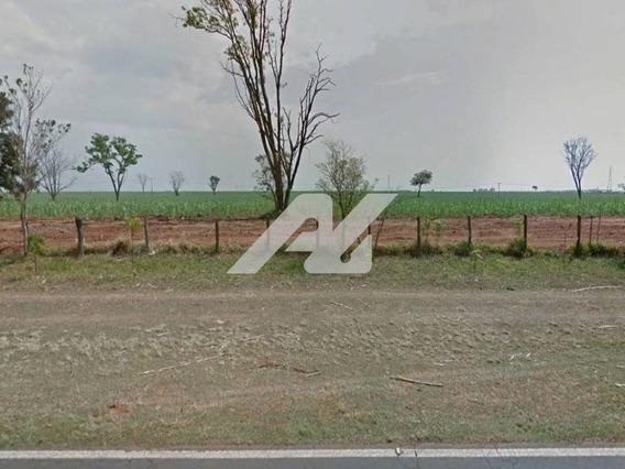 Área À Venda Em Centro - Ar123923