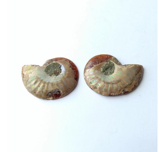 Amonita Iridiscente Natural Biseccionada Y Pulida 3cm