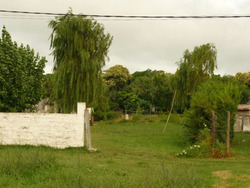 Terreno En Venta En Jardines Hipódromo