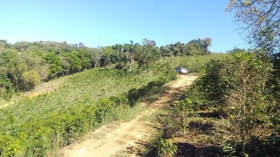 Sítio Para Comprar No Zona Rural Em Nepomuceno/mg - Nep803
