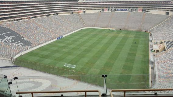 Alquilo Palco - Estadio Monumental - U Vs Carabobo Fc