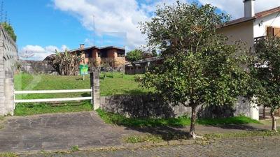 Terreno - Cinquentenario - Ref: 202944 - V-202944