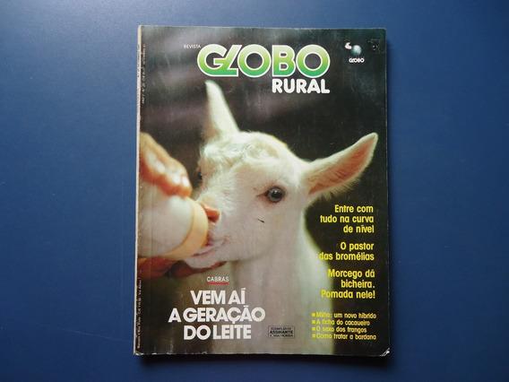Globo Rural 24 Leite De Cabra Sexador Cacau Truta Gravatá
