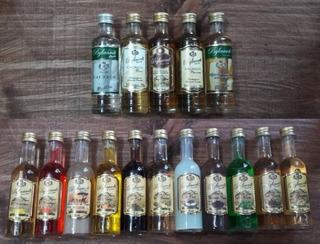 Kit Coleção Com 16 Miniaturas De Bebidas 50ml Destilaria Byl
