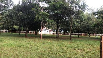 Fazenda A Venda Em Sidrolândia - Ms - 1016