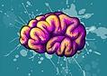Neurología, En Consultorio Y Domicilio, Neurólogo