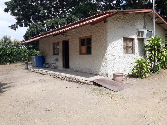 Hermosa Hacienda Cacaotera