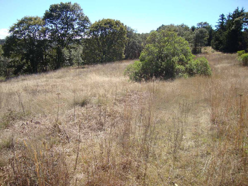 Imagen 1 de 10 de Terreno En Frac. Residencial Campestre Villa Del Carbón. L23